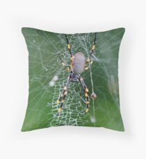 Orb weaver spider Throw Pillow