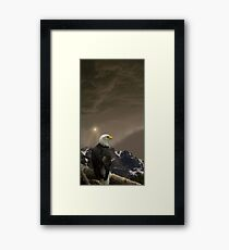 2144 Framed Print