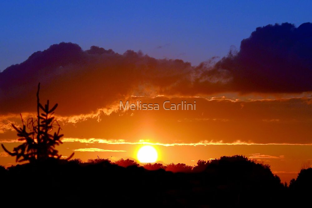 Chasing the Sun by Melissa Carlini
