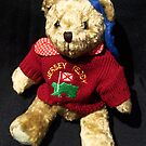 Jersey Teddy from Channel Islands by Bev Pascoe