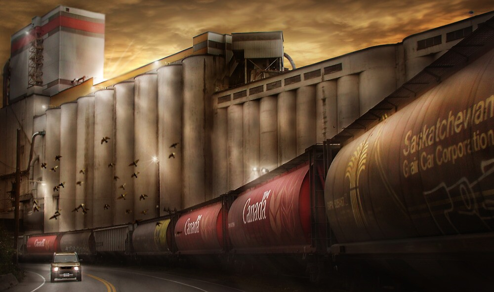 Low Level Road by Cliff Vestergaard