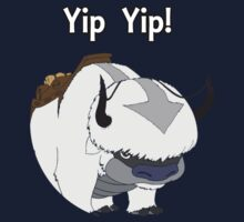Avatar the last airbender, Appa