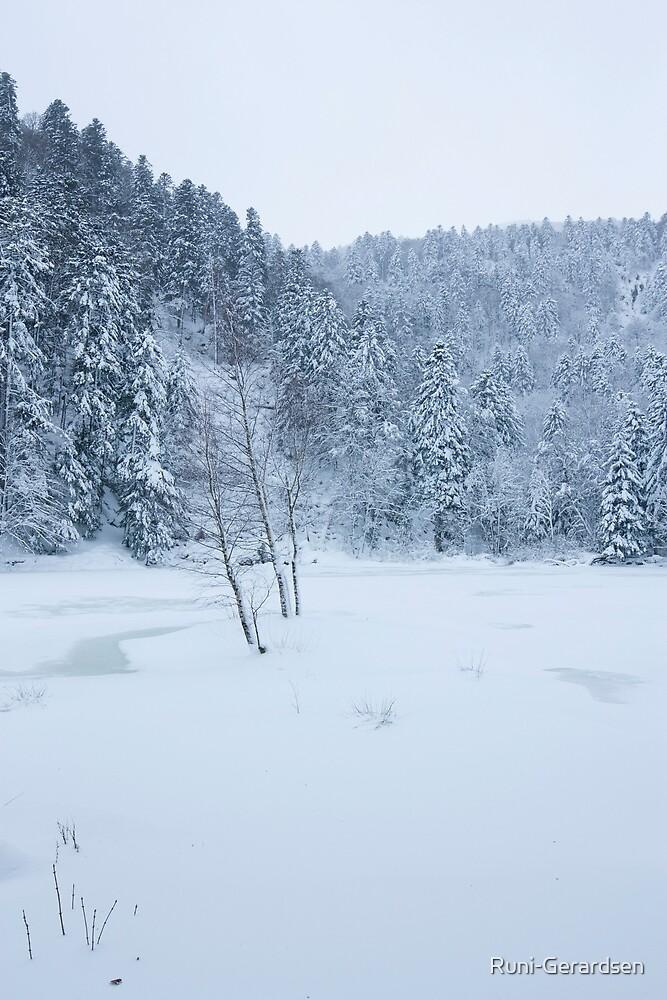 De Neige et de glace by Runi-Gerardsen