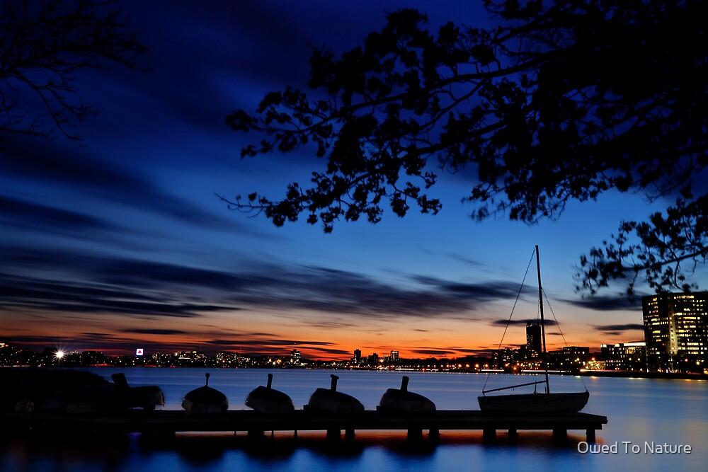 Esplanade sail, sun and baseball by Owed To Nature