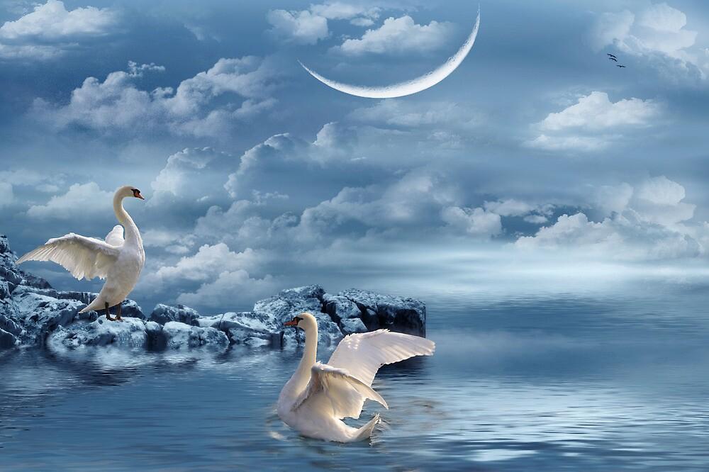 Moonlight Serenade by NewfieKeith