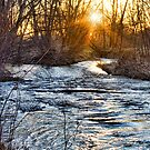 Sunrise On The St Vrain River by Bo Insogna