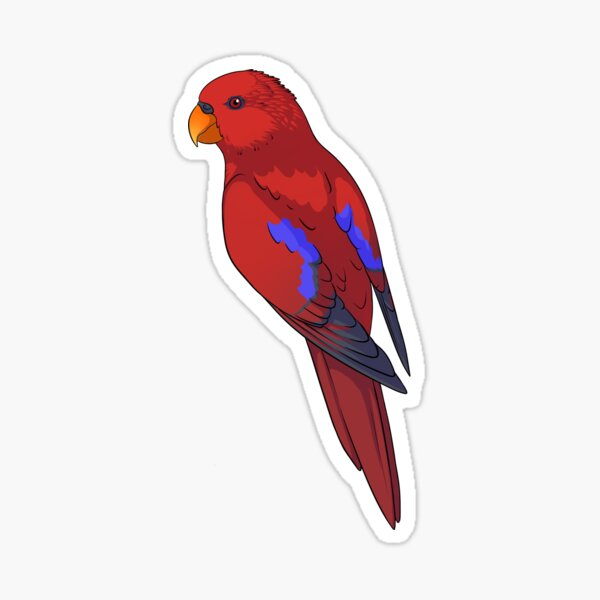 Clingy Red Lory Sticker
