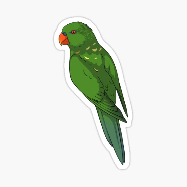 Clingy Scaly Breasted Lorikeet Sticker