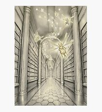 The White Library of the Elder Oeda Photographic Print