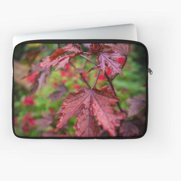 Autumn Maple Laptop Sleeve