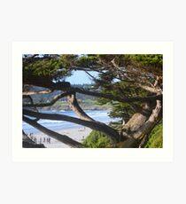 Pebble Beach Lodge! Art Print