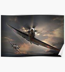 Fly-by Poster