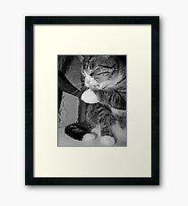 Bathing Beauty Black & White Framed Print