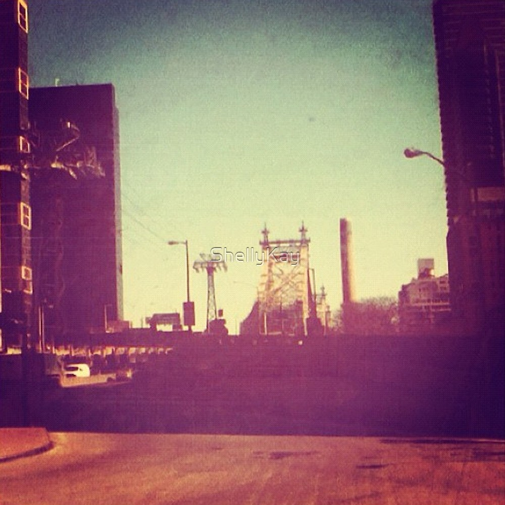 view from the bus by ShellyKay