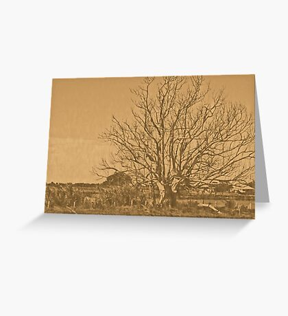 lithographic tree Greeting Card