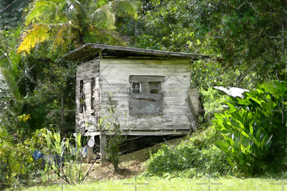 Wooden House At Brasso Seco, Trinidad. by santimanitay