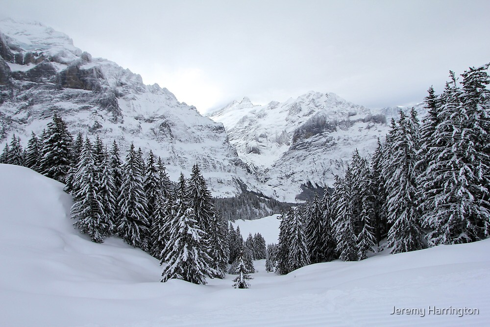 Grindelwald, Switzerland by Jeremy Harrington