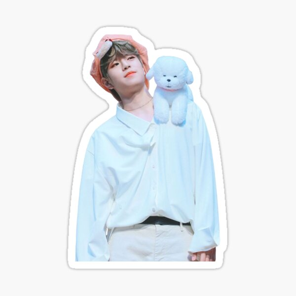 stray kids seungmin Sticker