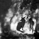 secrets and shadows  von Marianna Tankelevich