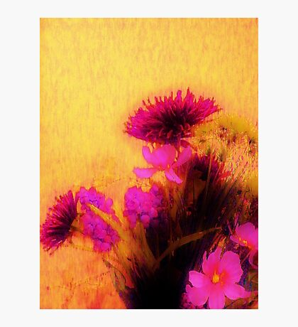 Orchestrating Madness Photographic Print