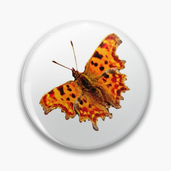Comma Butterfly Pin