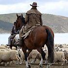 Herding sheep on Castlepoint Beach by Barbara Caffell