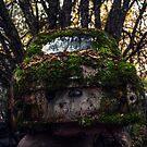 The Car Cemetery by geirkristiansen