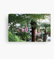 In the Palmhouse III Canvas Print