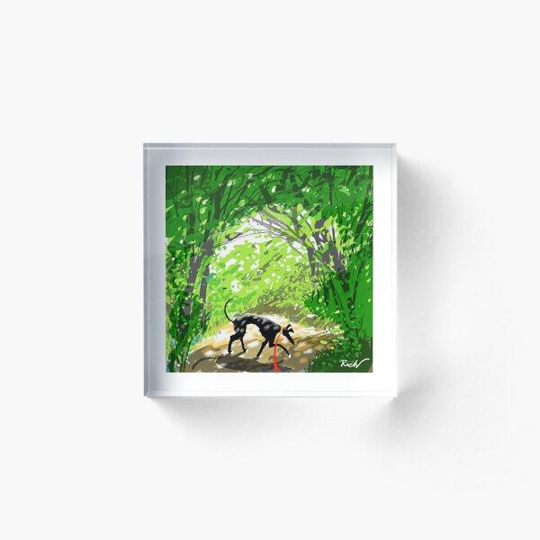 Woodland Shade Hound Acrylic Block