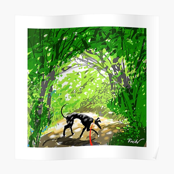 POSTER LURCHER Hound Dog Art From a painting David Andrews CANVAS PRINT