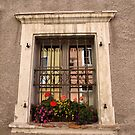 A window from Palais Kuenburg. by Lee d'Entremont
