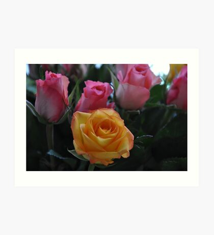 home roses Art Print