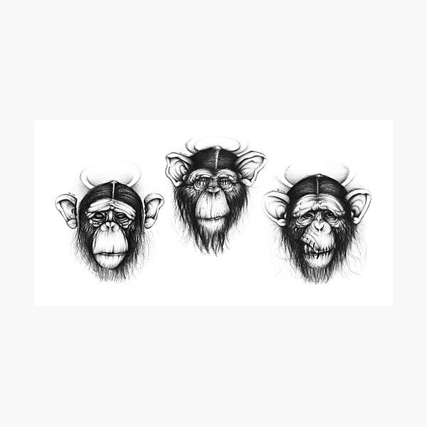 Three Monkeys (Saints drawing series) Photographic Print