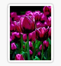 Pink Tulips Sticker