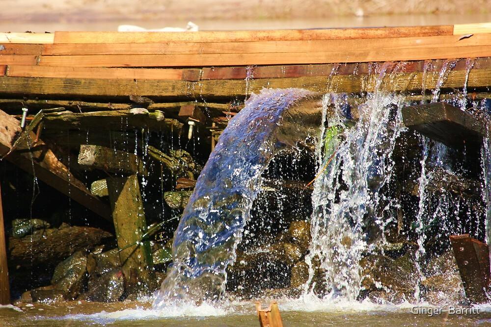 Sciple's Mill Running Water by Ginger  Barritt