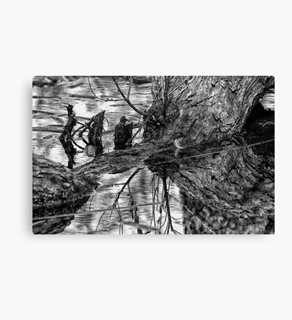 Dark Reflections Canvas Print