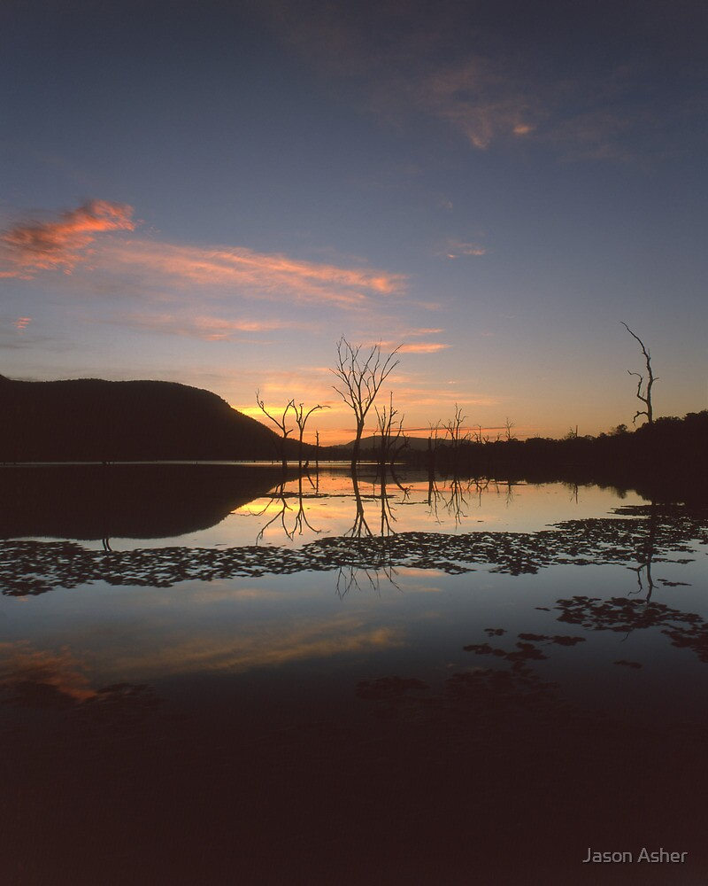 """Live"" ∞ Lake Somerset, QLD - Australia by Jason Asher"