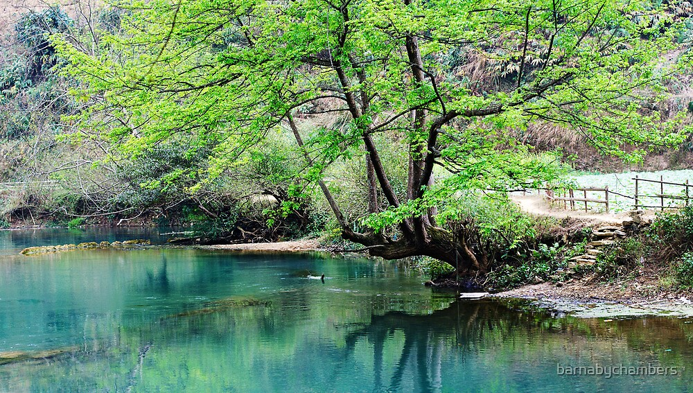 Duo Yi River 1 by barnabychambers