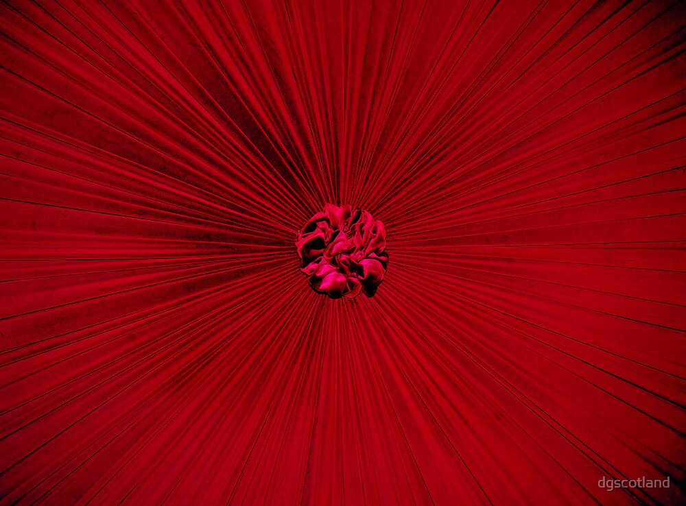 Red Bed. by dgscotland