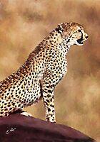 Cheetah.... by ellenspaintings