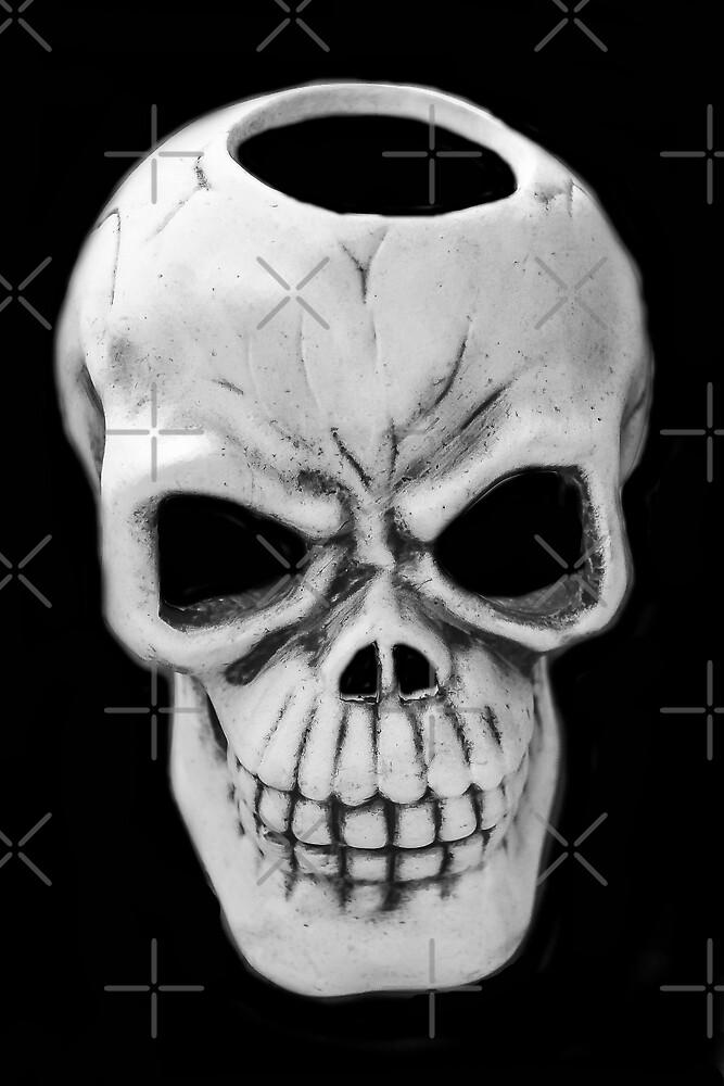 Skull by Heather Friedman