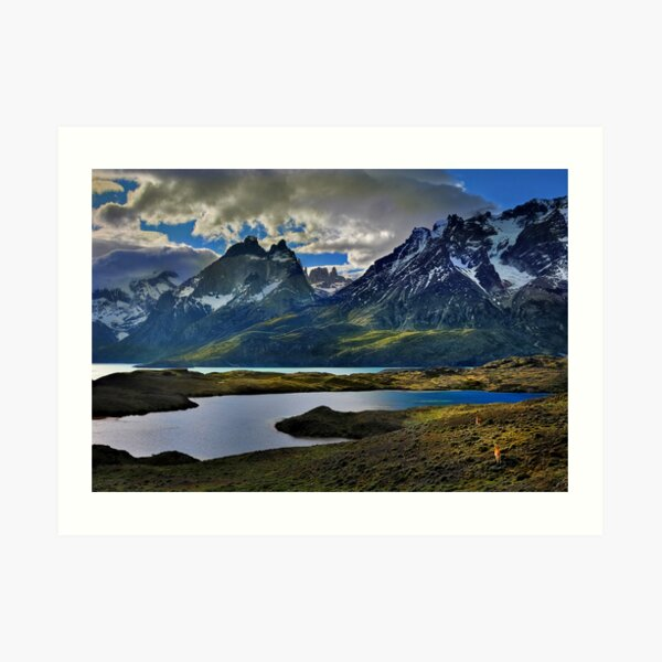 Guanacos and the Massif Art Print