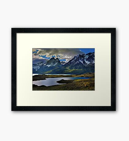 Guanacos and the Massif Framed Print