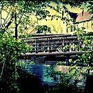 Oak Leaf Bridge © by Dawn Becker