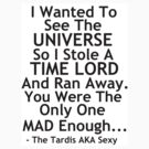 Stole a Time Lord And Ran Away by Emmie Impalandelorean