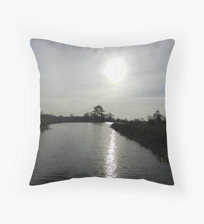 Following the light Throw Pillow