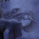 Beautifull in Blue by Joyce Knorz
