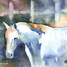 A White Horse by arline wagner