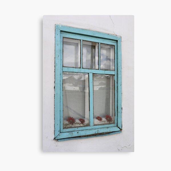 Karakul window - double glazing and red plastic flowers Canvas Print