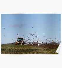 Ploughing the land Poster
